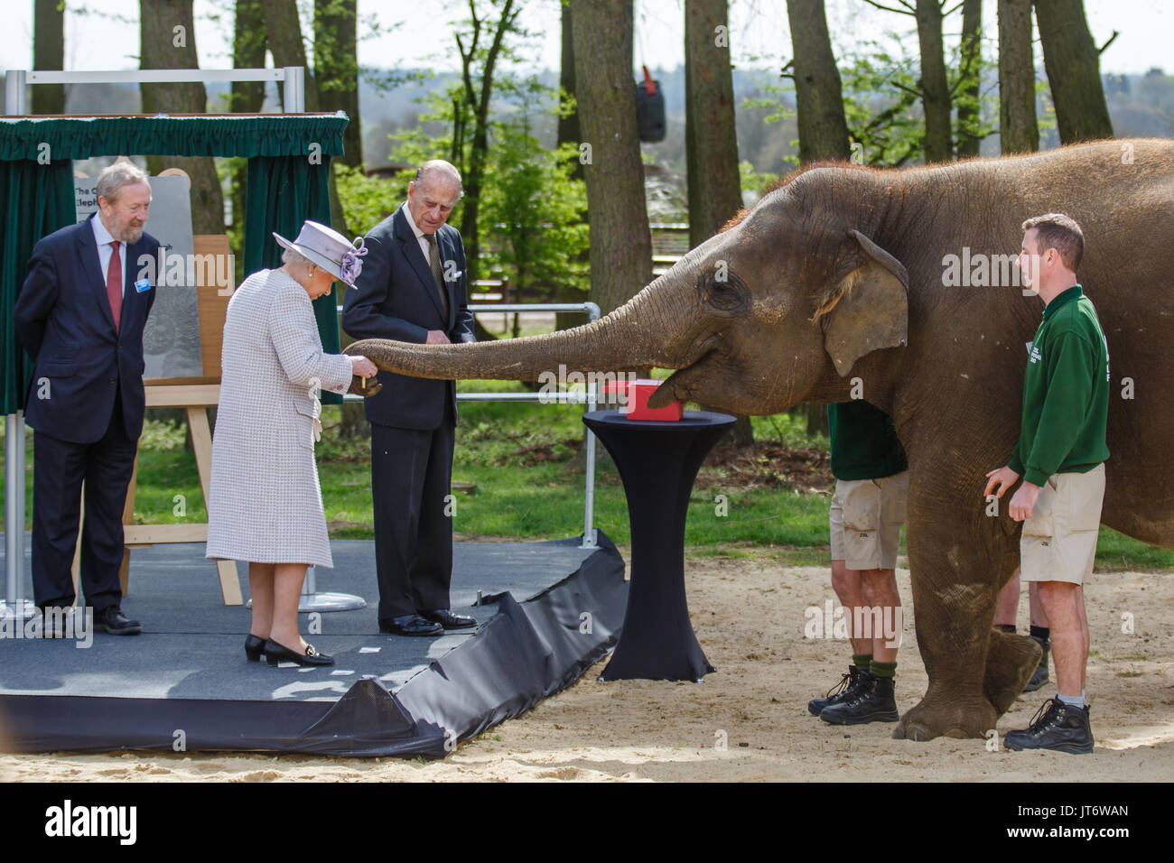The Queen Helps Feed Elephants at Whipsnade Zoo The Queen Helps Feed Elephants at Whipsnade Zoo new picture