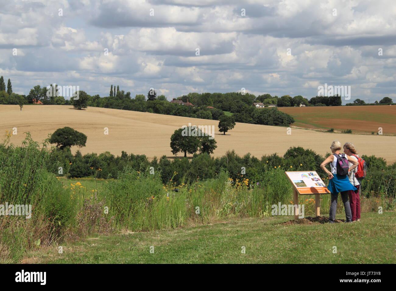 Big Sky Meadow, RHS Garden Hyde Hall Flower Show 2017, Chelmsford, Essex, England, Great Britain, United Kingdom, UK, Europe - Stock Image