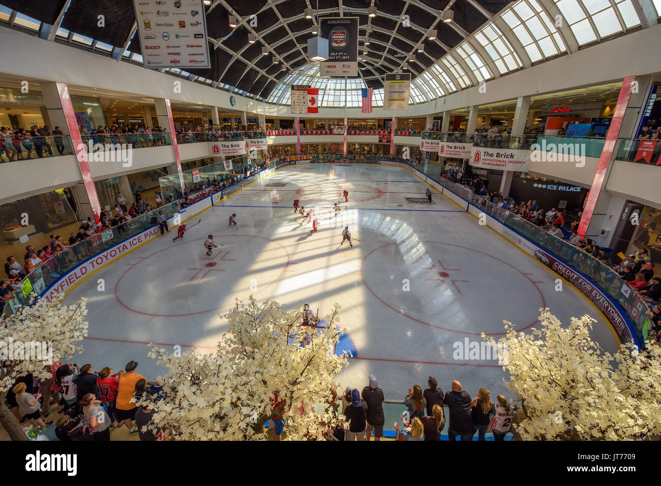 Ice hockey arena in the West Edmonton Mall. - Stock Image