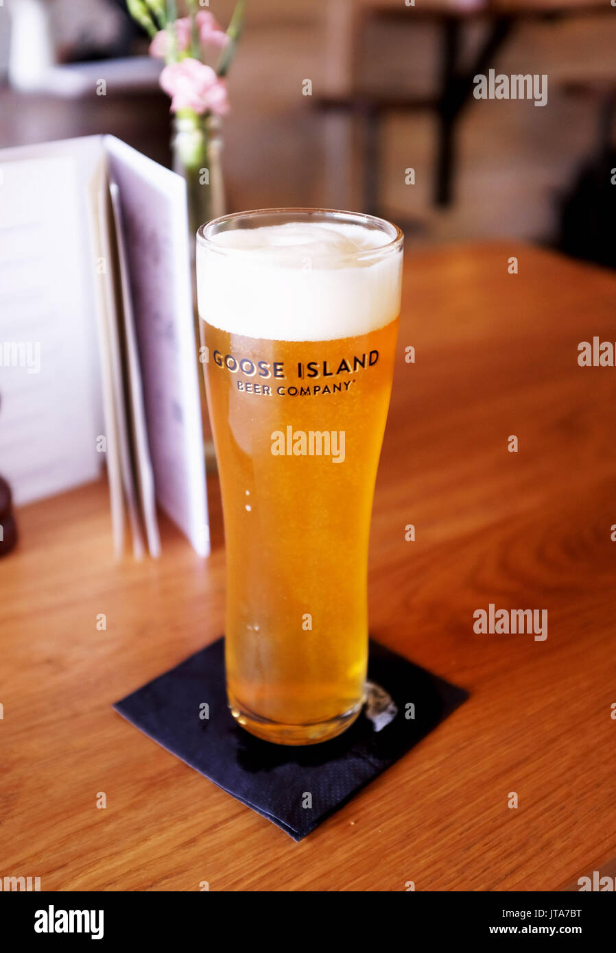 Glass of Goose Island beer brewed in Chicago USA - Stock Image