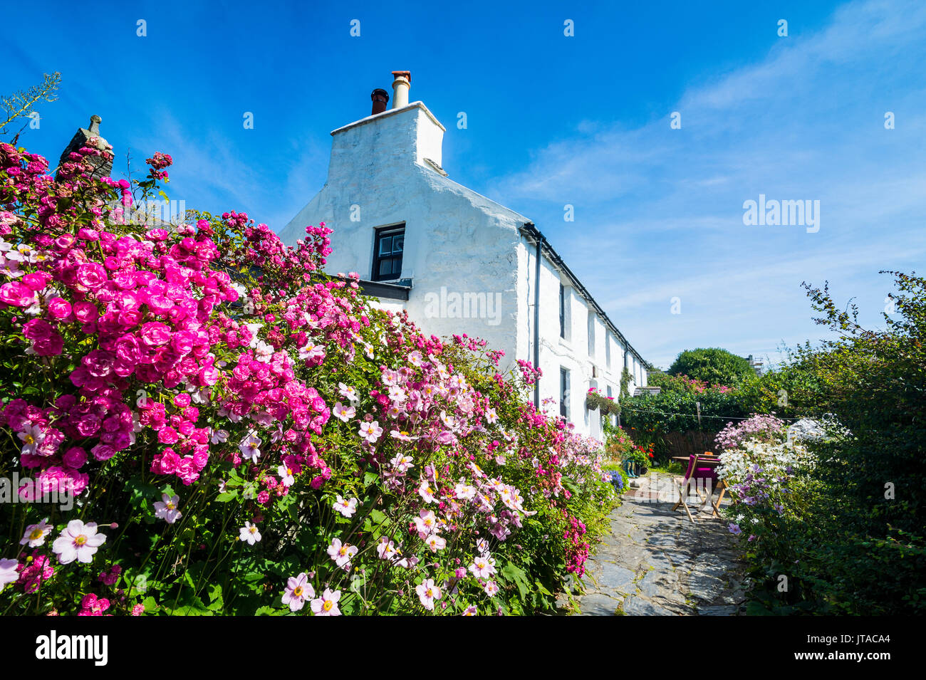 Living museum Cregneash village, Isle of Man, crown dependency of the United Kingdom, Europe - Stock Image