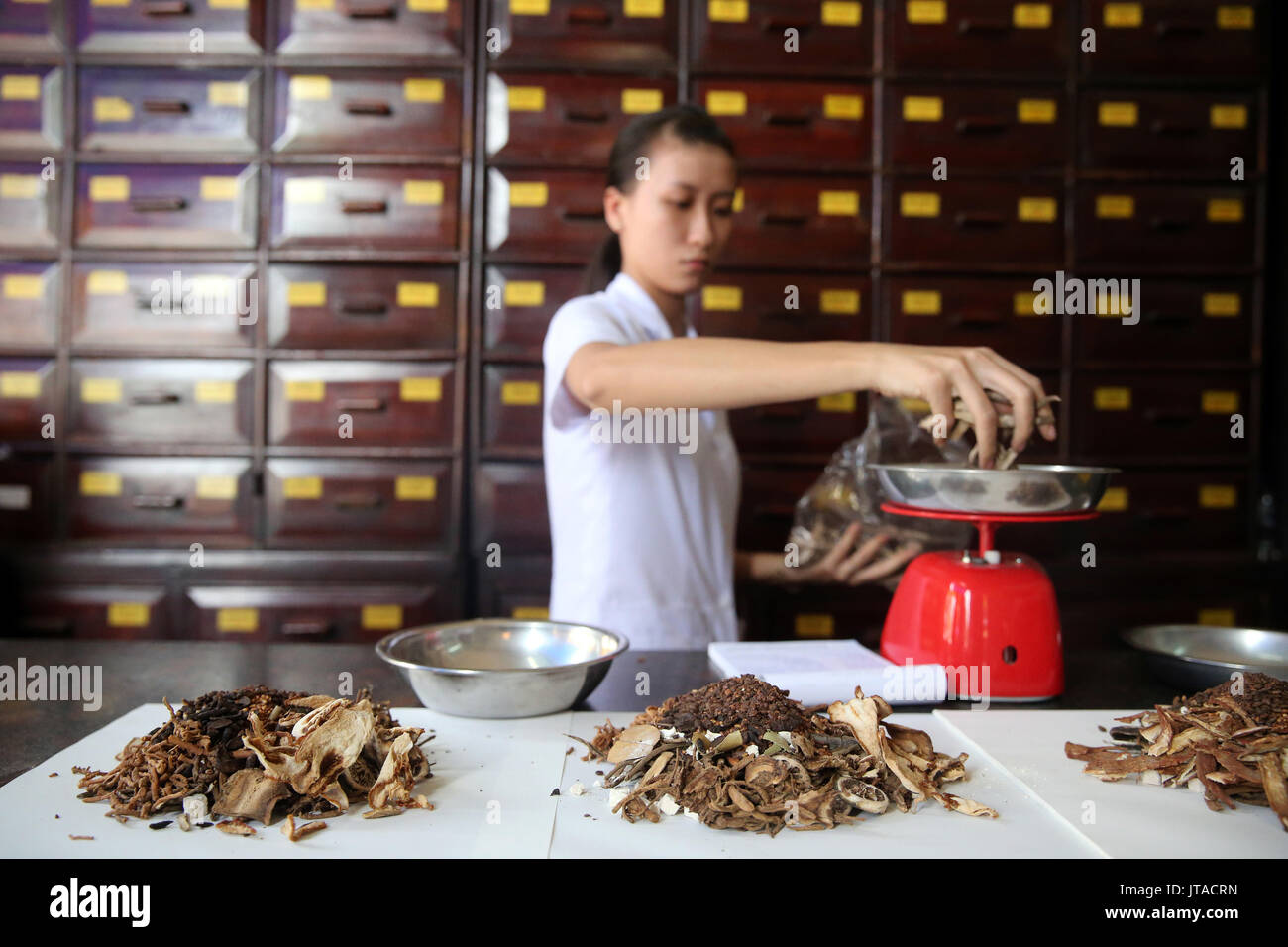 Herbal medicine therapy, traditional Chinese medicine pharmacy, Ho Chi Minh City, Vietnam, Indochina, Southeast Asia, Asia - Stock Image