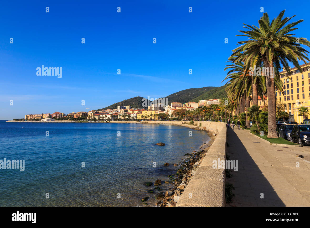 Saint Francois beach promenade with palm trees, morning light, Ajaccio, Island of Corsica, Mediterranean, France, Mediterranean - Stock Image