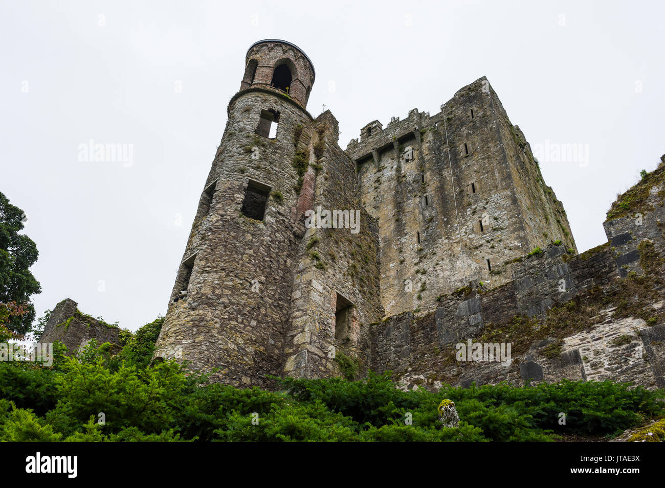 Blarney Castle, Blarney, County Cork, Munster, Republic of Ireland, Europe Stock Photo