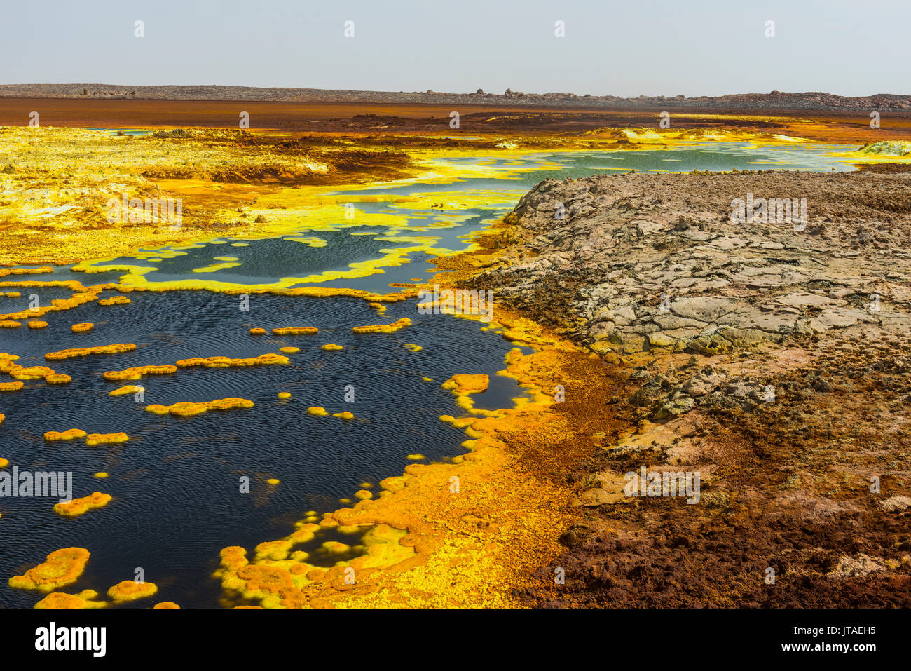 Colourful spings of acid in Dallol, hottest place on earth, Danakil depression, Ethiopia, Africa - Stock Image