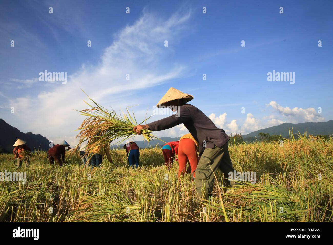Farmers Landscape