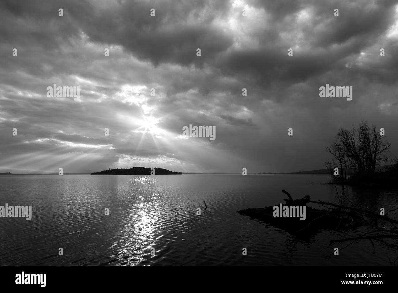 Sun rays coming out through the clouds over an island on a lake, with trees and trunks in the foreground - Stock Image