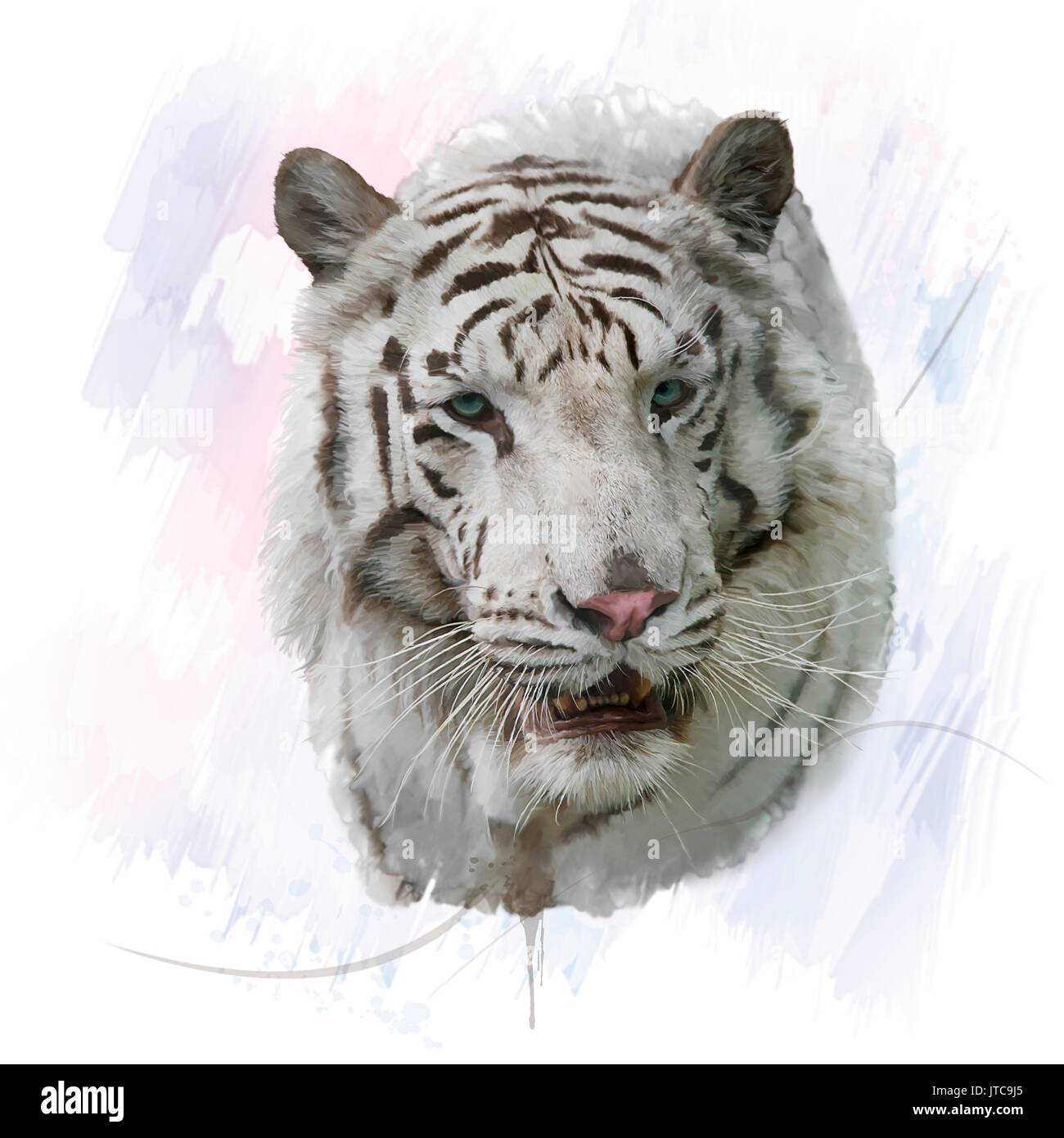 Digital Painting of White Tiger - Stock Image