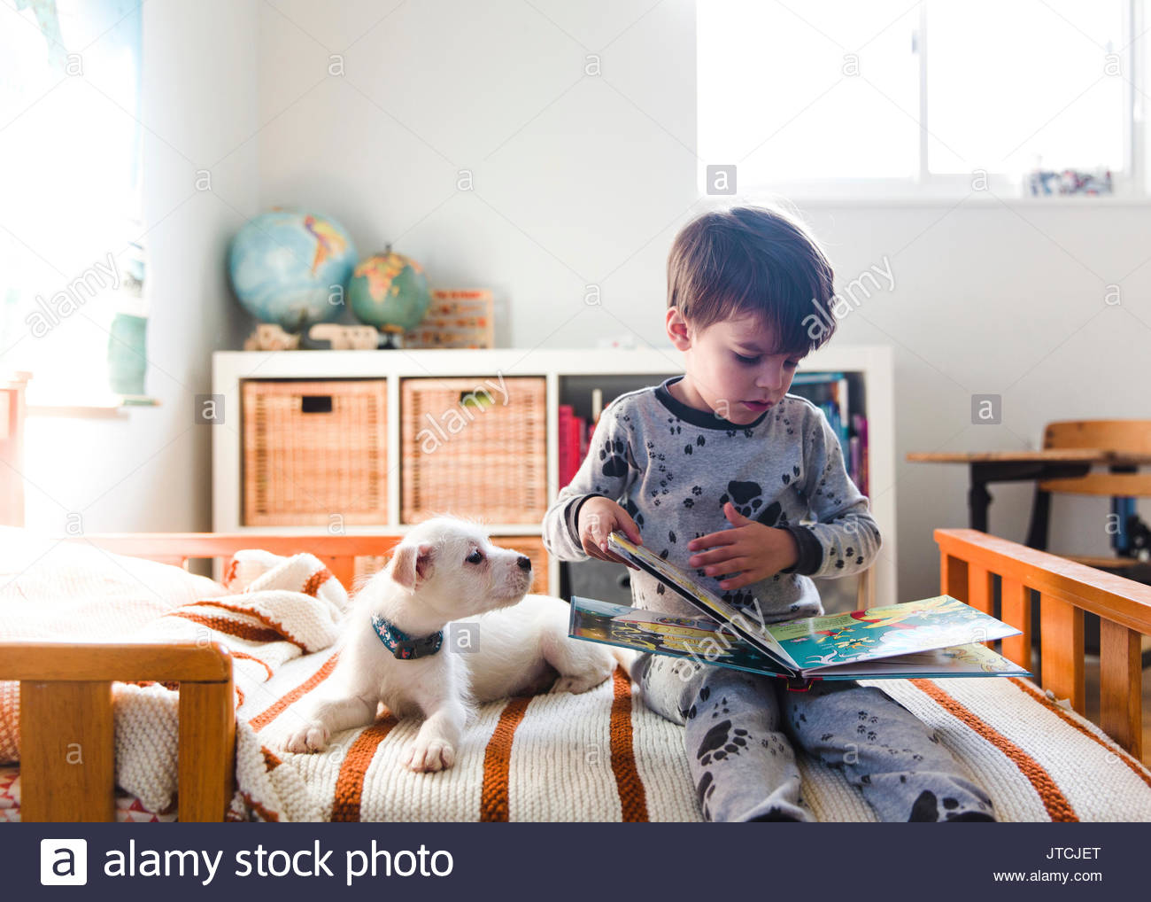 A puppy lying on a bed next to a child, boy reading a book. - Stock Image