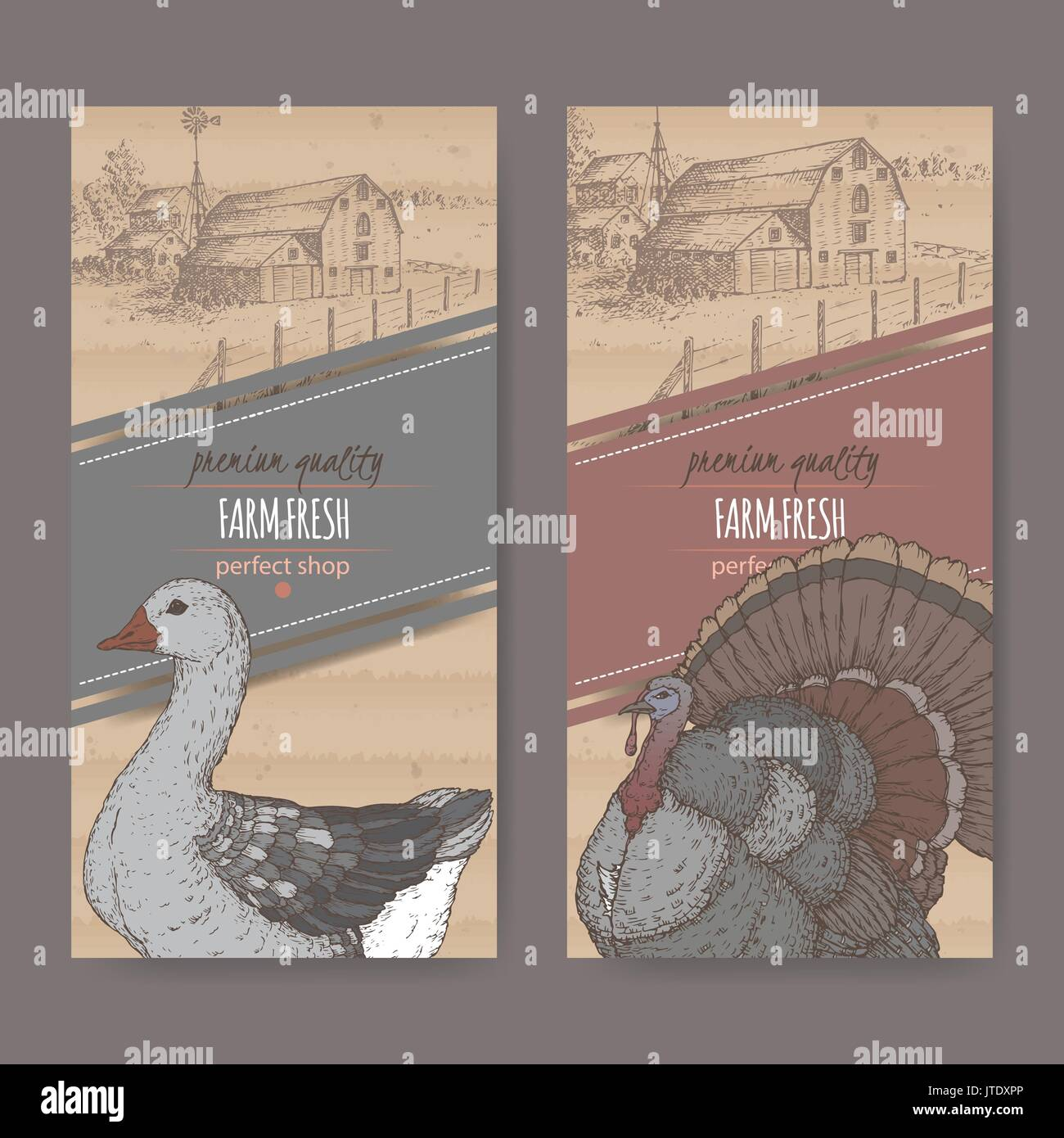Two farm shop labels with farmhouse, barn, color goose and turkey on cardboard. - Stock Vector