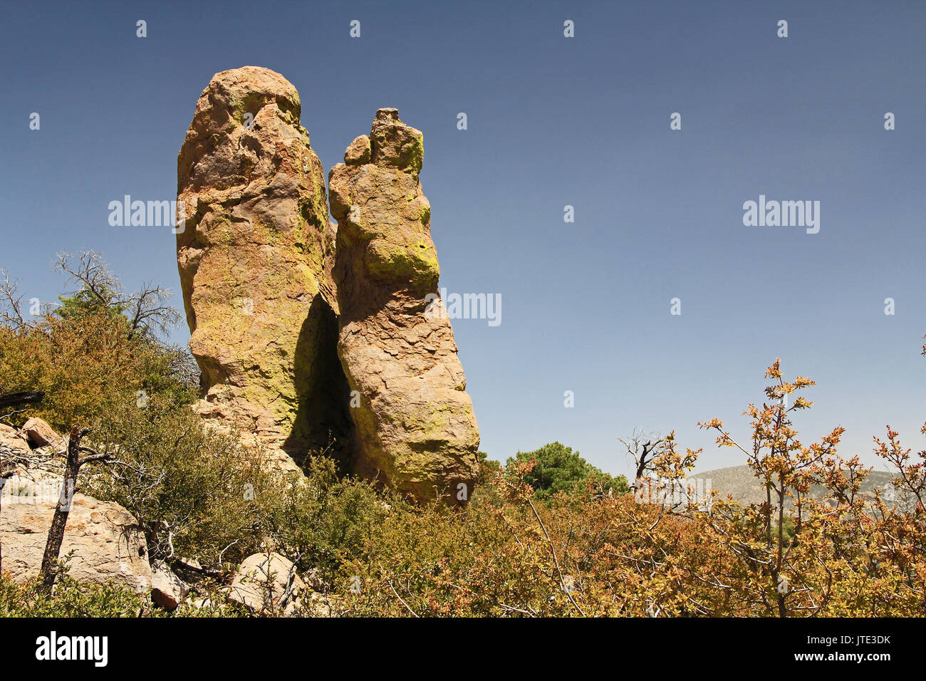 Massai Point rock hoodoos formation in Echo Canyon, Chiricahua National Monument near Wilcox, in southern Arizona, USA. Stock Photo