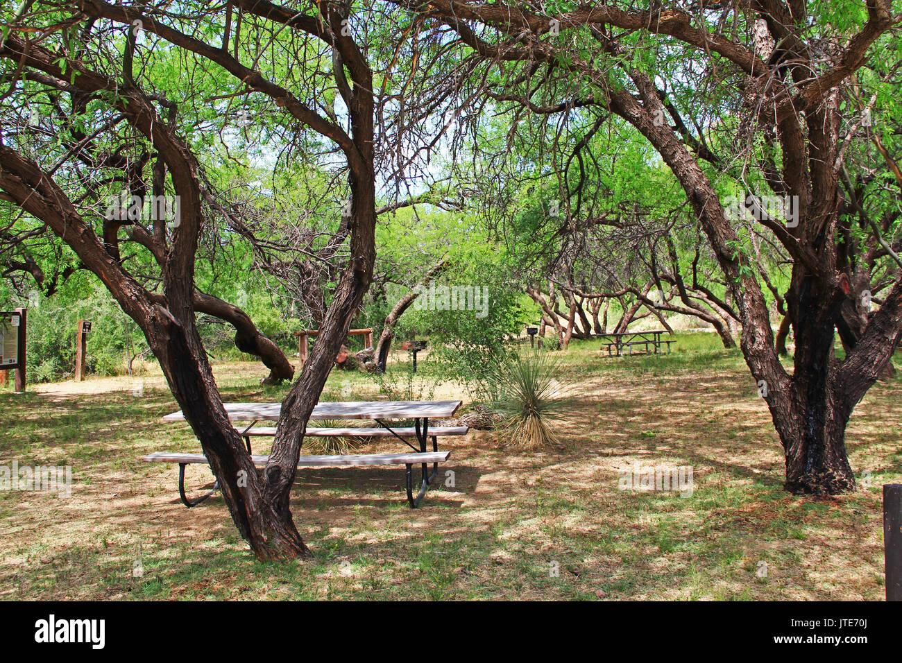 La Posta Quemada Ranch picnic area near the cowboy statue in Colossal Cave Mountain Park in Vail, Arizona, USA near Tucson. - Stock Image