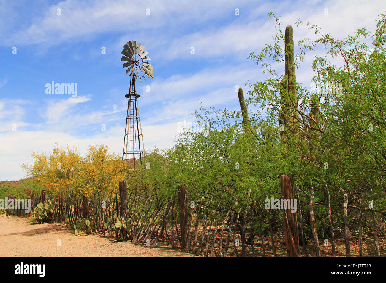 Windmill, mountain and butterfly garden along a fence on the La Posta Quemada Ranch with copy space in Colossal Cave Mountain Park in Vail, Arizona, U - Stock Image