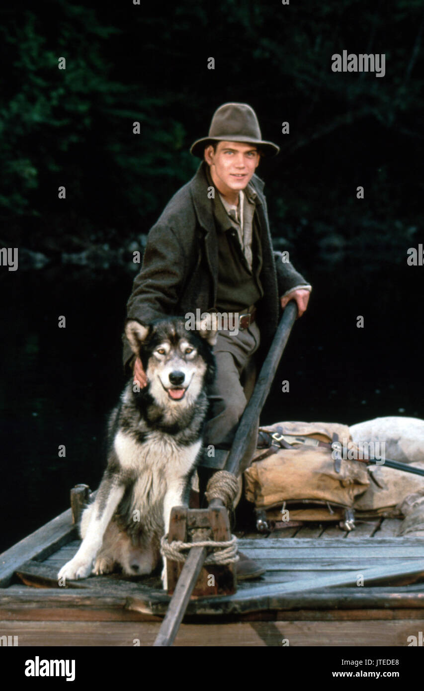 SCOTT BAIRSTOW WHITE FANG 2: MYTH OF THE WHITE WOLF (1994) - Stock Image