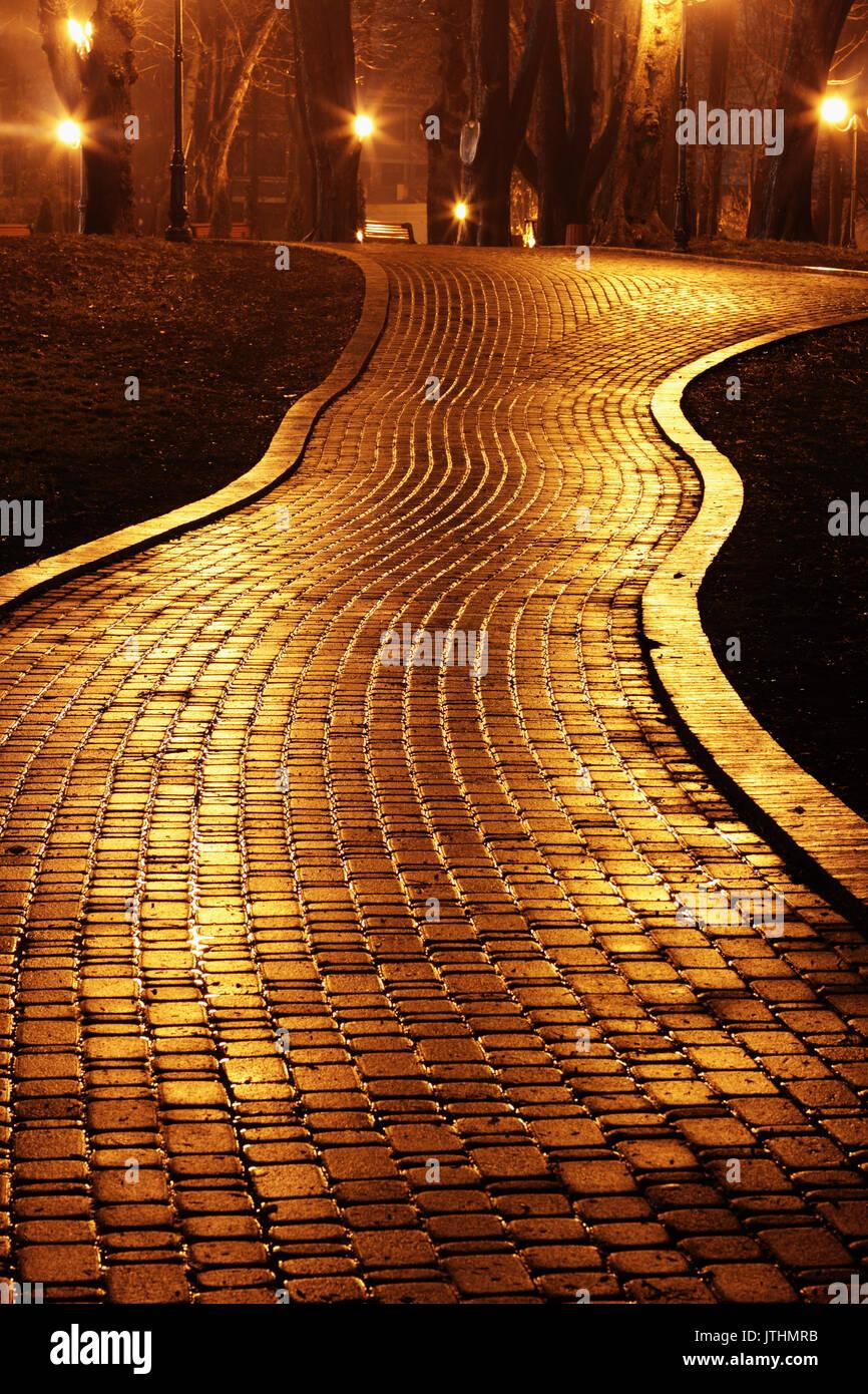 Road to Mariinsky Park at night - Stock Image