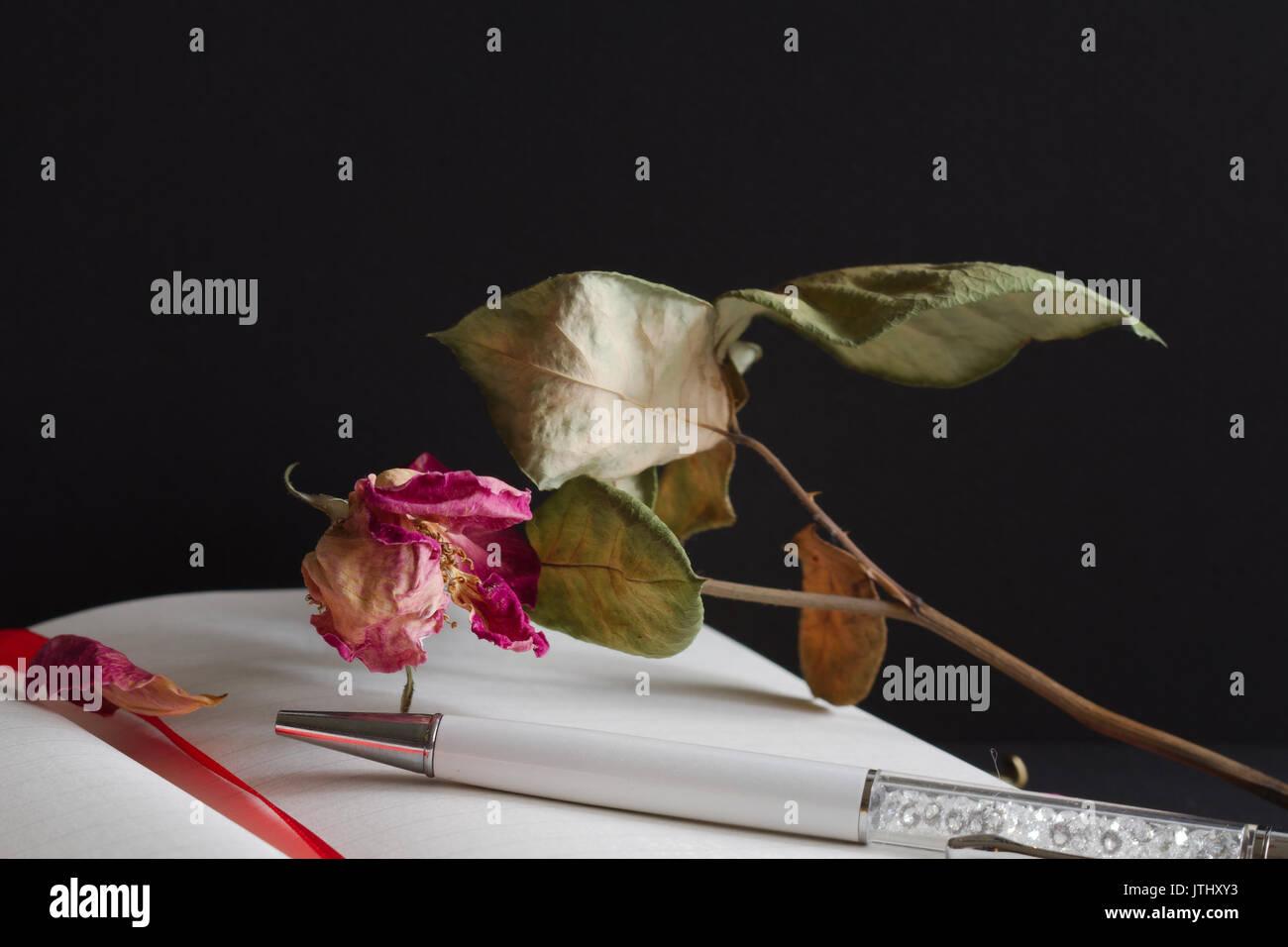 Journal, Pen & Dead Rose - Macro Stock Photo