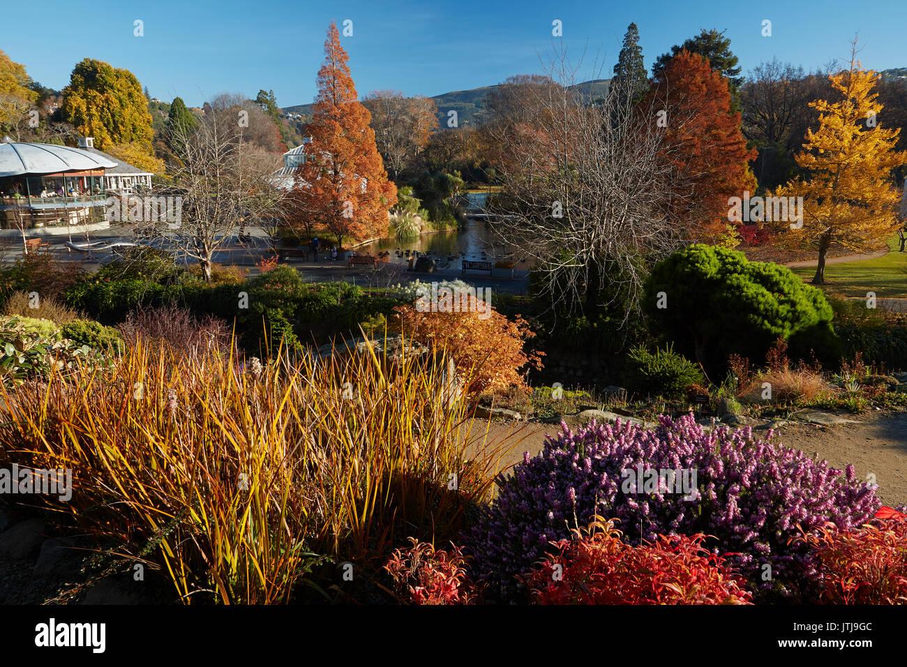 Dunedin Botanical Gardens Stock Photos & Dunedin Botanical Gardens ...