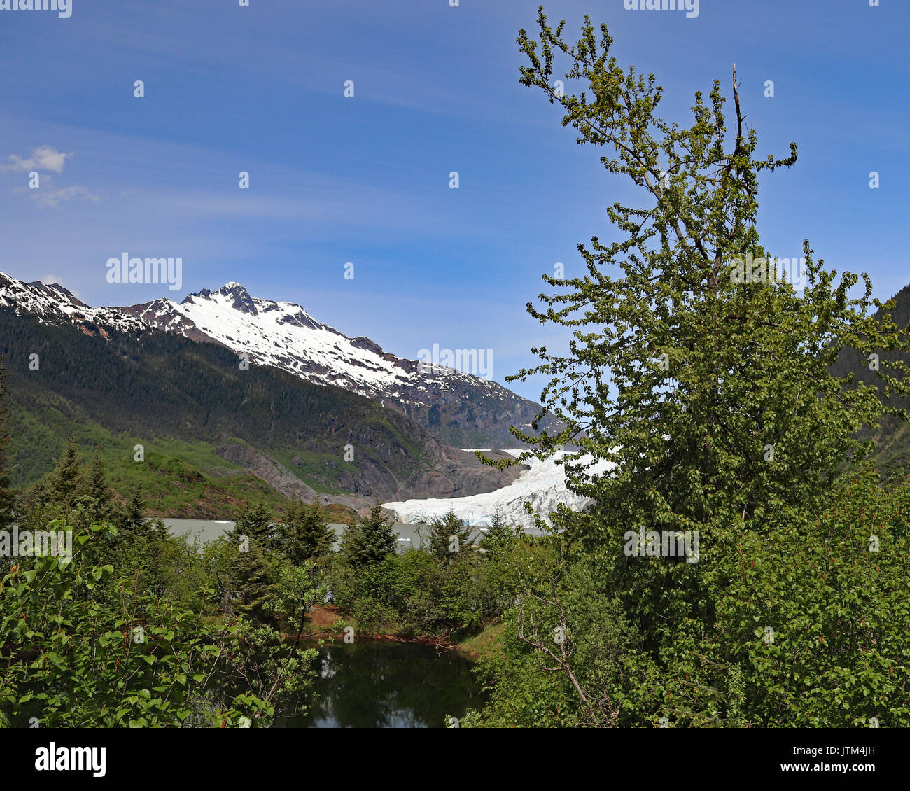 Mendenhall Glacier seen from the foot paths across the lake - Stock Image