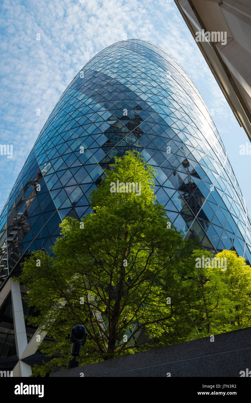 UK London City 30 St Mary Axe The Gherkin Swiss Re Building built 2003 180 metres 591 feet 41 floors storeys offices design Norman Foster   Arup trees - Stock Image