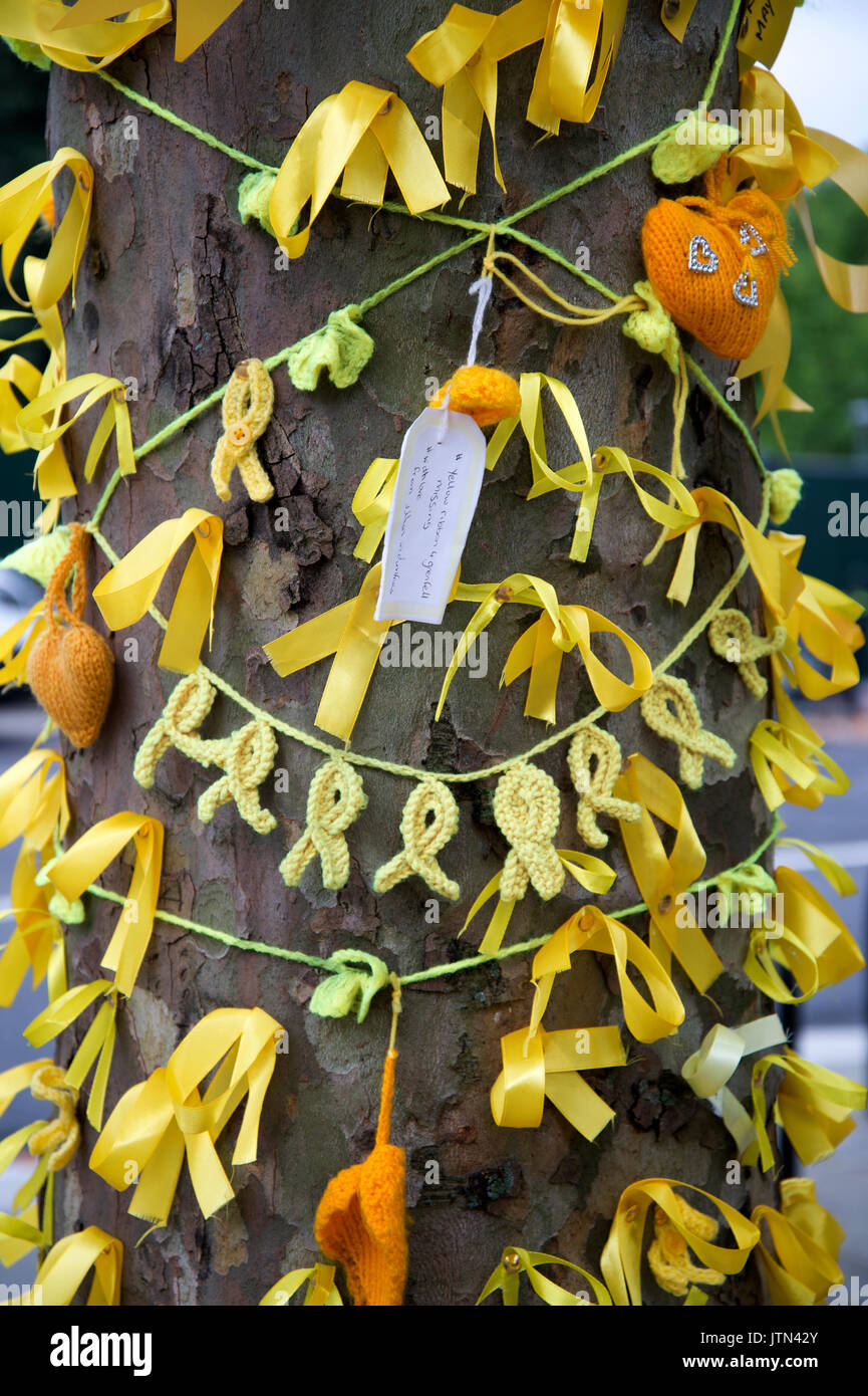 Grenfell Tower, West London. Aftermath of the tragedy. Yellow ribbons to honour the missing tied around a tree - Stock Image