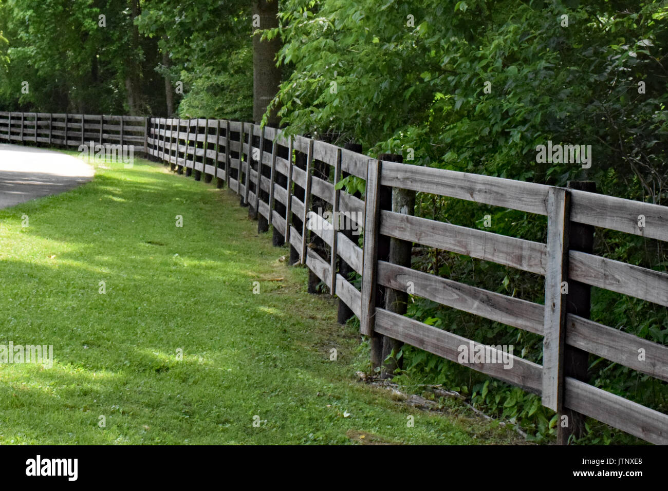 Old Wooden Fence - Stock Image