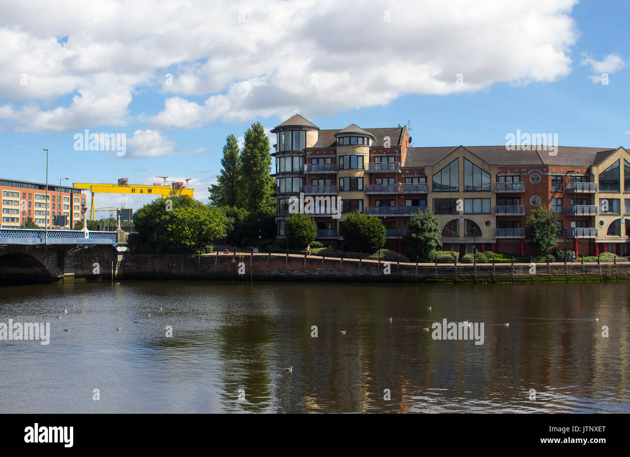 Apartments on the bank of the River Lagan beside the Queen's Bridge in central Belfast with the iconic Harland and Wolff shipyard cranes overlooking t - Stock Image