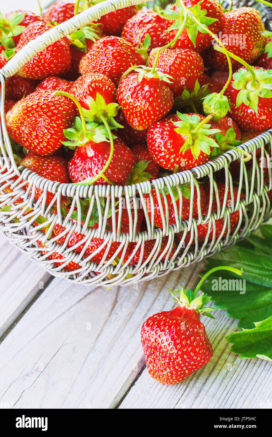 Juicy fresh strawberries in a basket on white wooden background, selective focus. - Stock Image