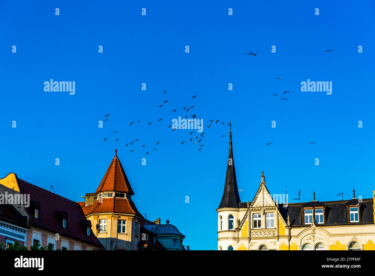 Birds flying above buildings on the square in Pszczyna, Poland. - Stock Image