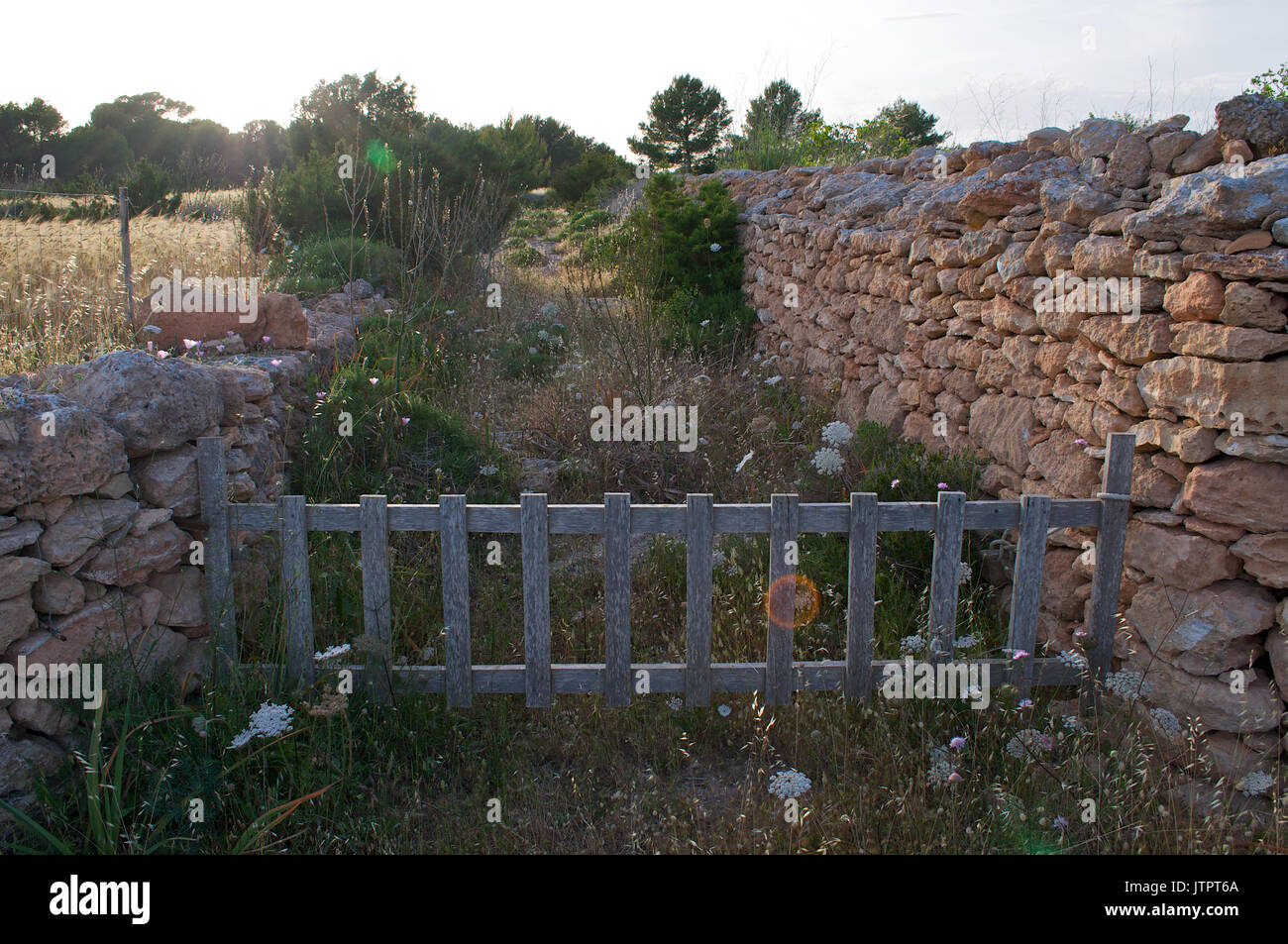 An old wood fence closes a track made with traditional stonewalls at La Mola (Formentera, Balearic Islands, Spain) - Stock Image