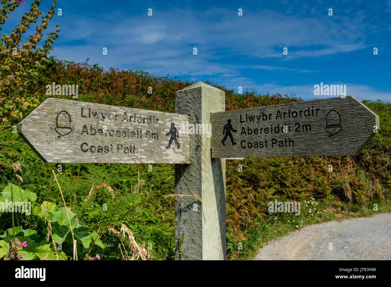 Signpost on the Wales/Pembrokeshire Coast Path near Porthgain, Pembrokeshire, Wales - Stock Image
