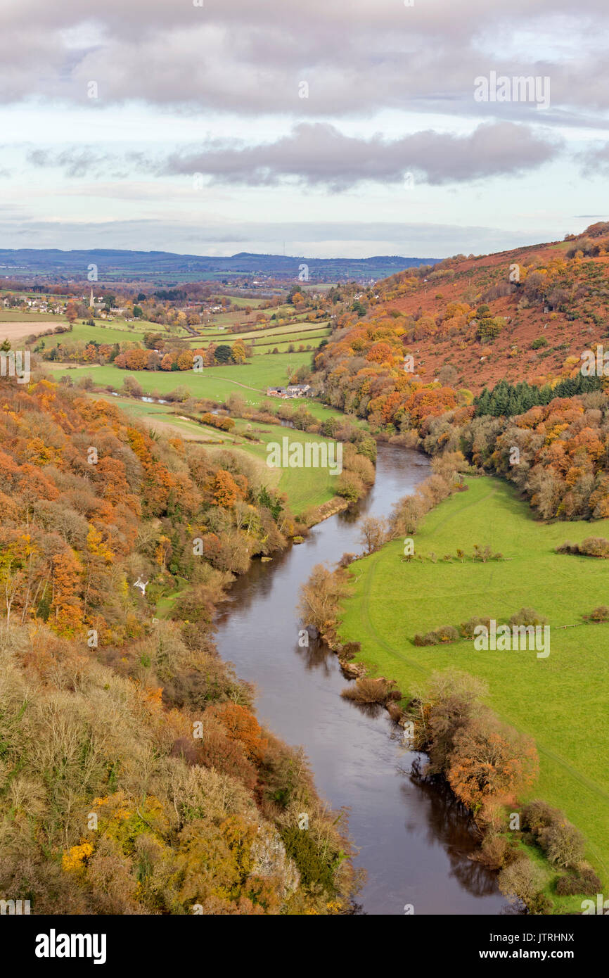 Autumn at Symonds Yat Rock, Wye Valley, Herefordshire, England, UK - Stock Image