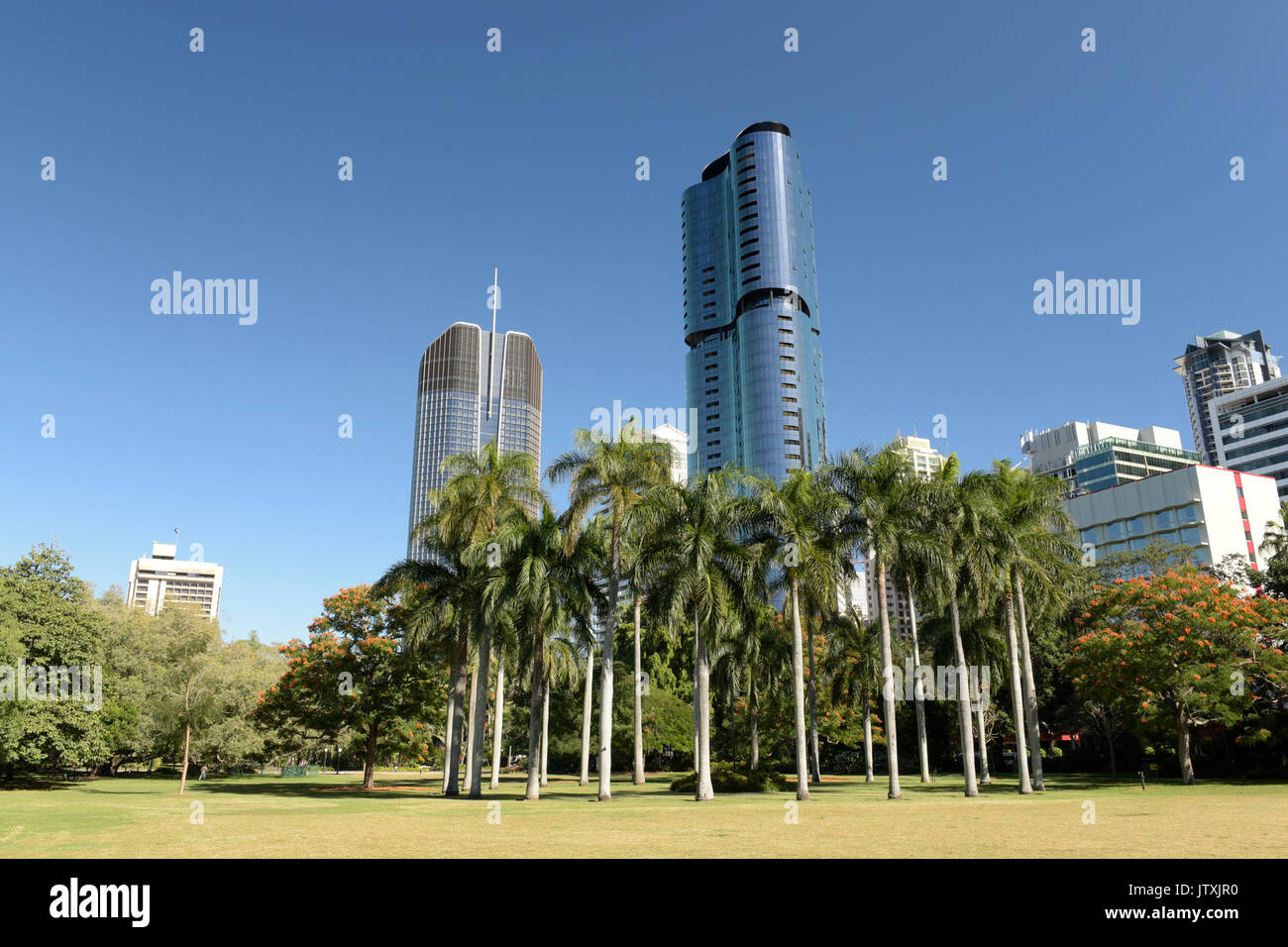 Brisbane City Botanical Gardens - Stock Image