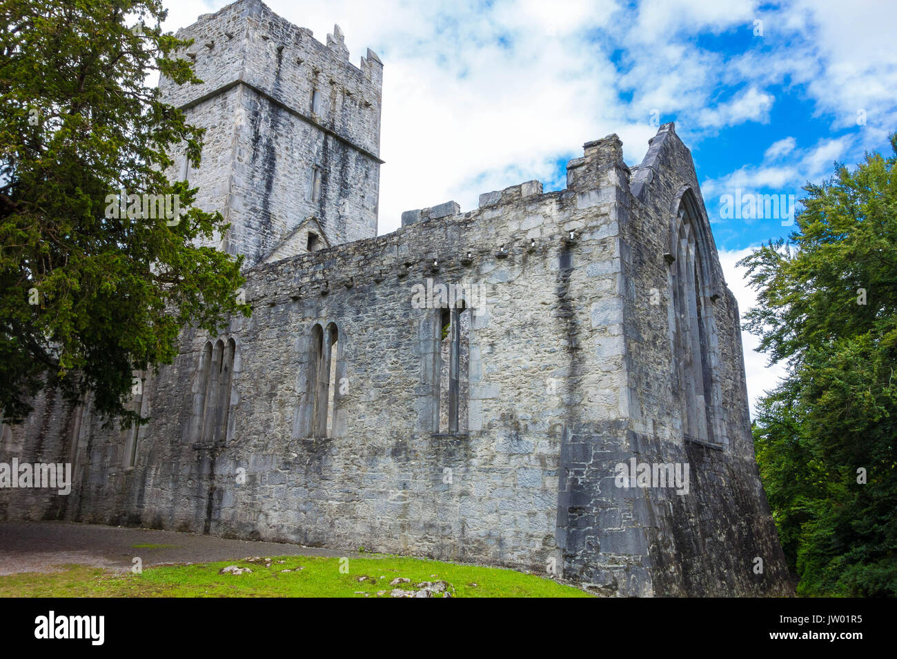 Muckross Abbey built in 1448 as a friary by Franciscan monks - Stock Image