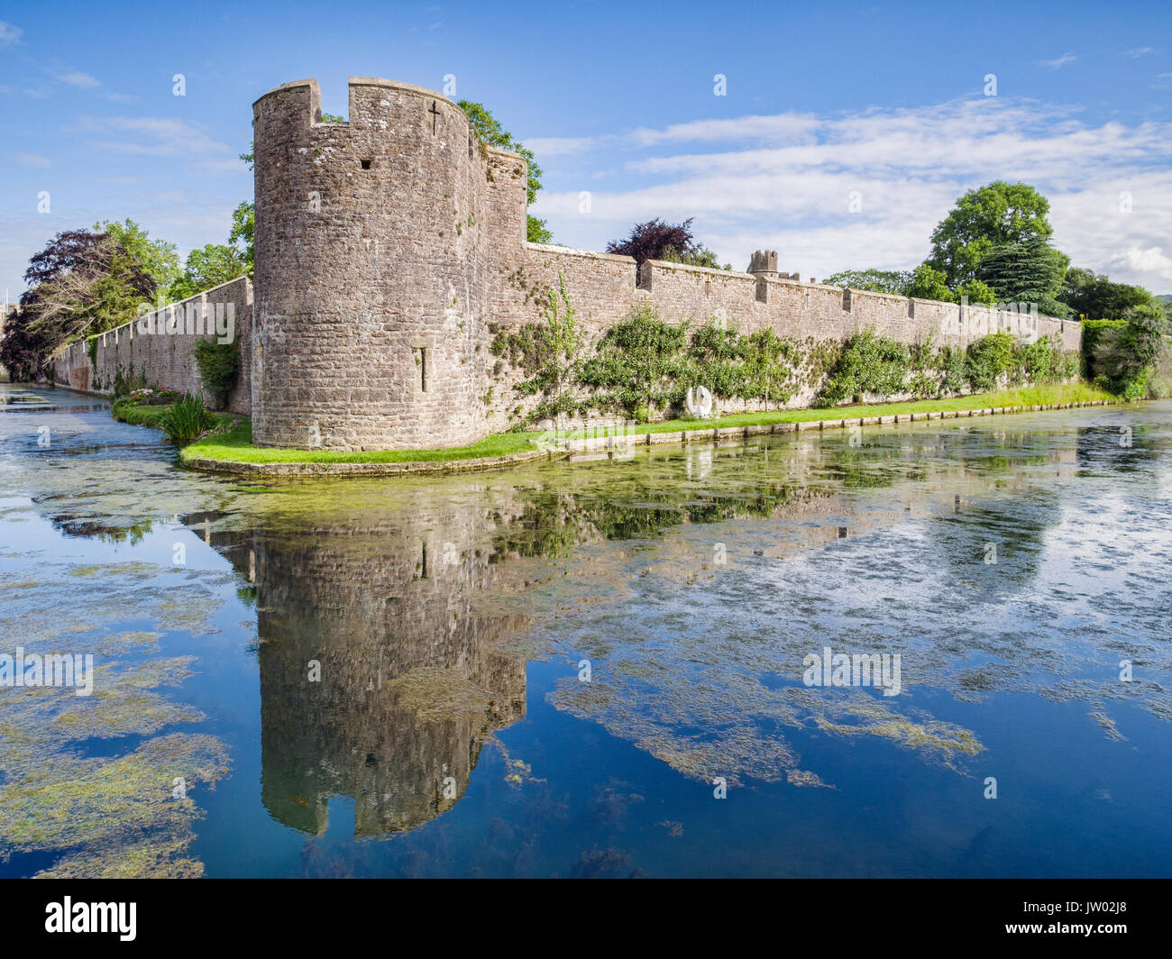 The moat and curtain wall surrounding the medieval Bishop's Palce at Wells, Somerset, England, UK. - Stock Image