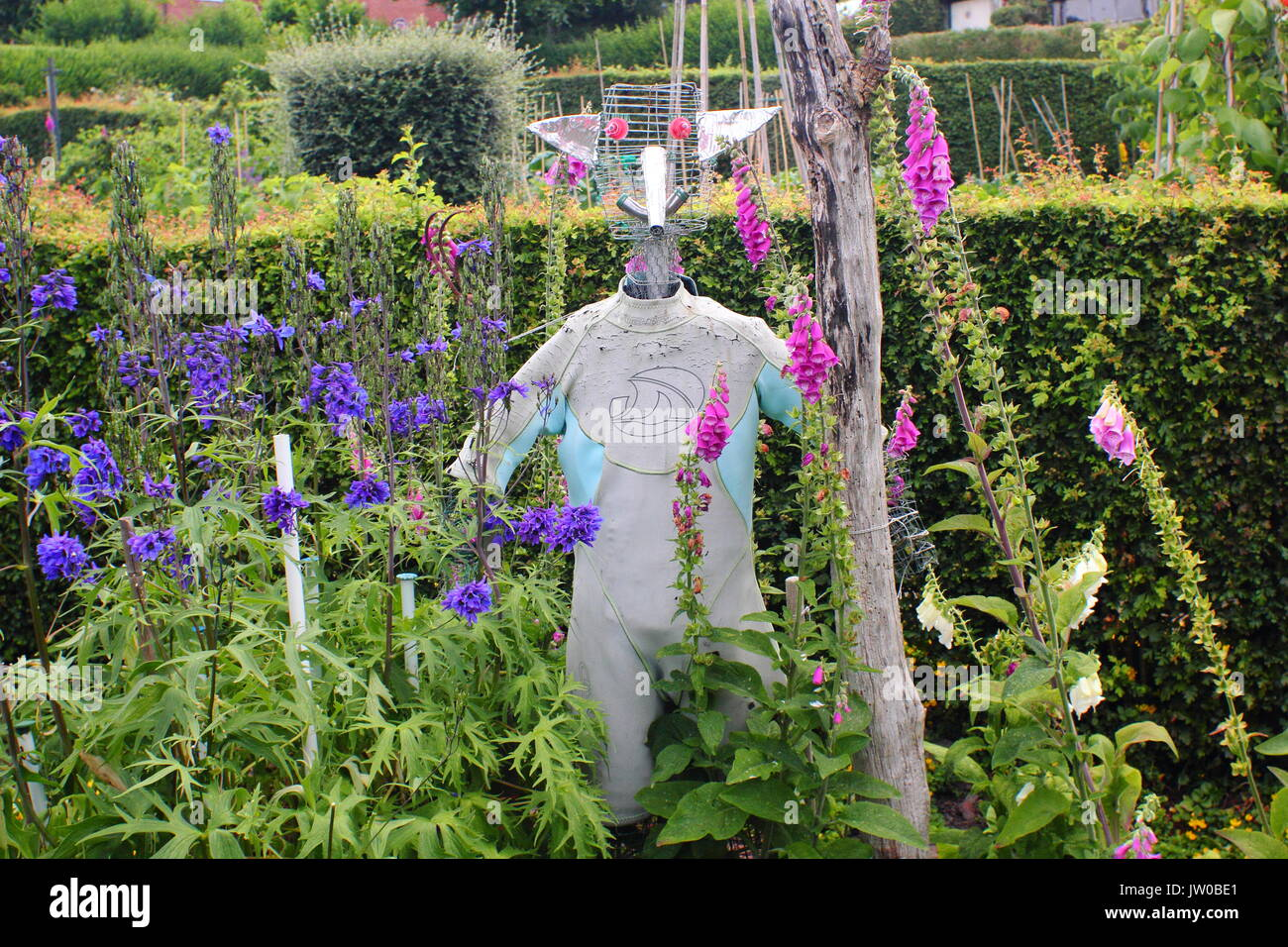 A scarecrow in a suburban allotment garden during an open allotment event in summer, near Sheffield, England, UK - Stock Image