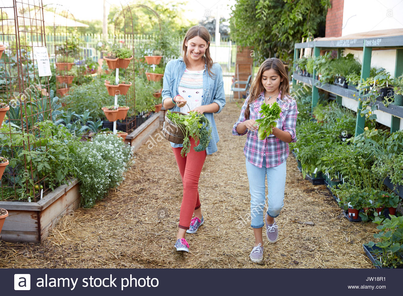 Latina sisters shopping in plant nursery - Stock Image