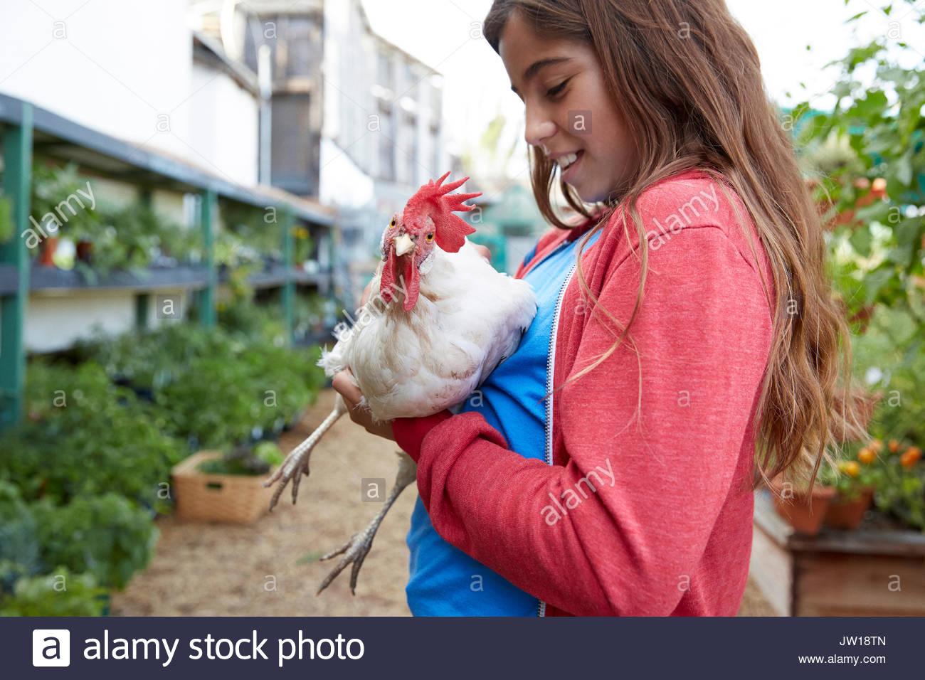 Latina girl holding chicken in garden - Stock Image