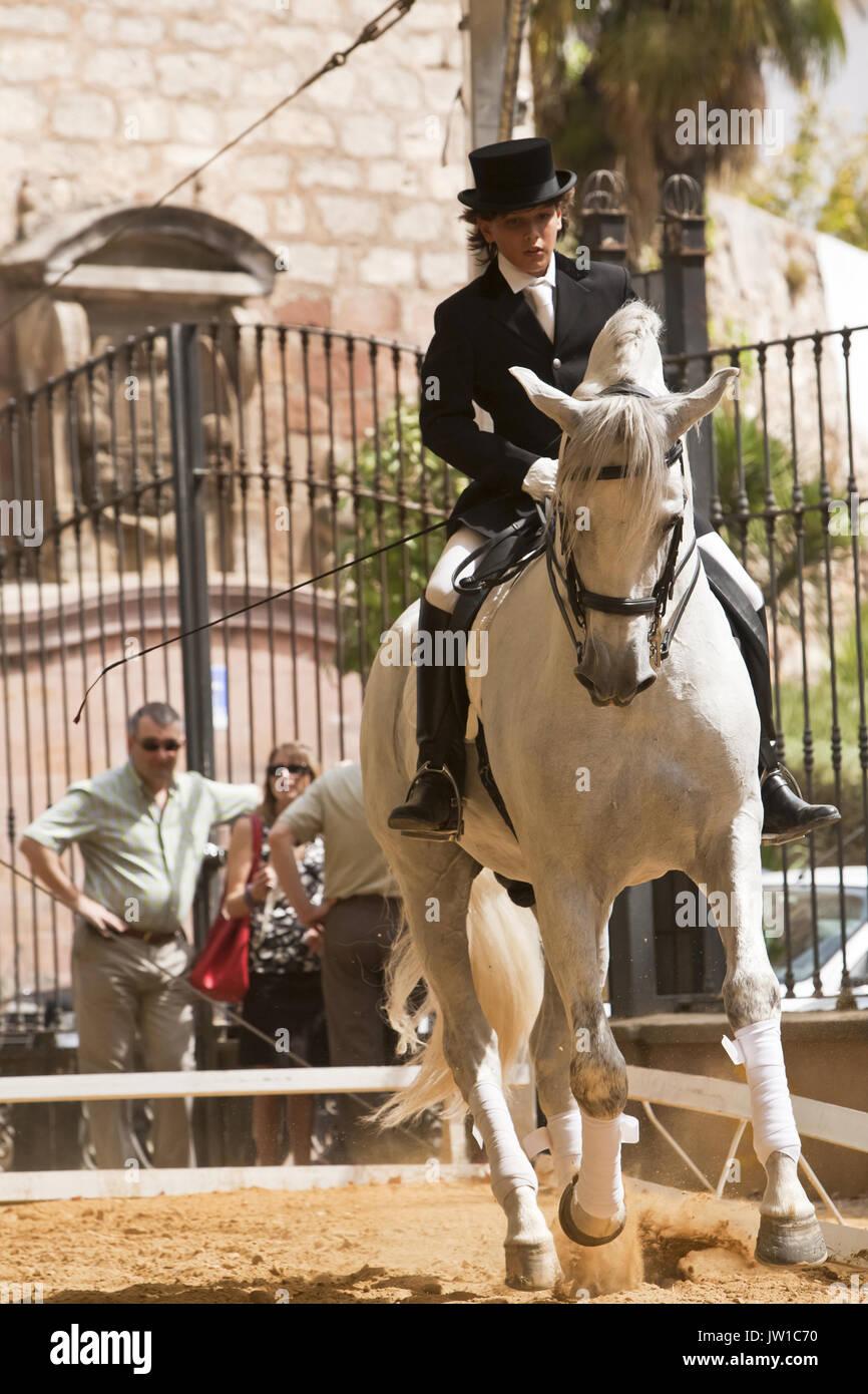 Equestrian championship of high school, Andujar, Andalusia, Spain - Stock Image