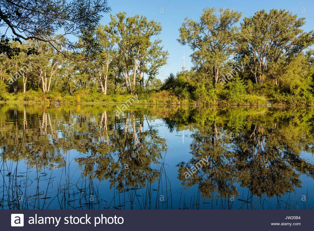 Toronto Islands Park lagoon trees reflected Toronto Ontario Canada Stock Photo