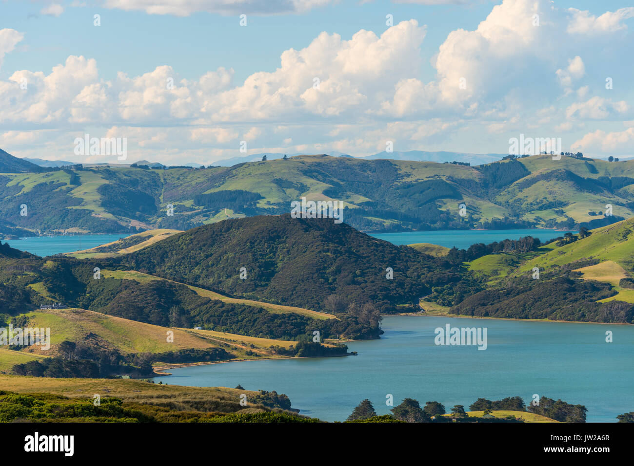 Hoopers Inlet, Inlet in green hilly landscape, Dunedin, Otago Peninsula, South Island, New Zealand, Oceania - Stock Image