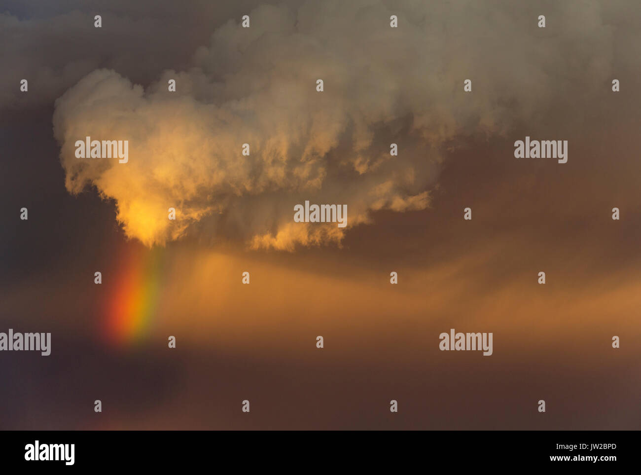 Evening thunderstorm with Cumulonimbus cloud and rainbow above a sand dune, rainy season, Kalahari Desert - Stock Image