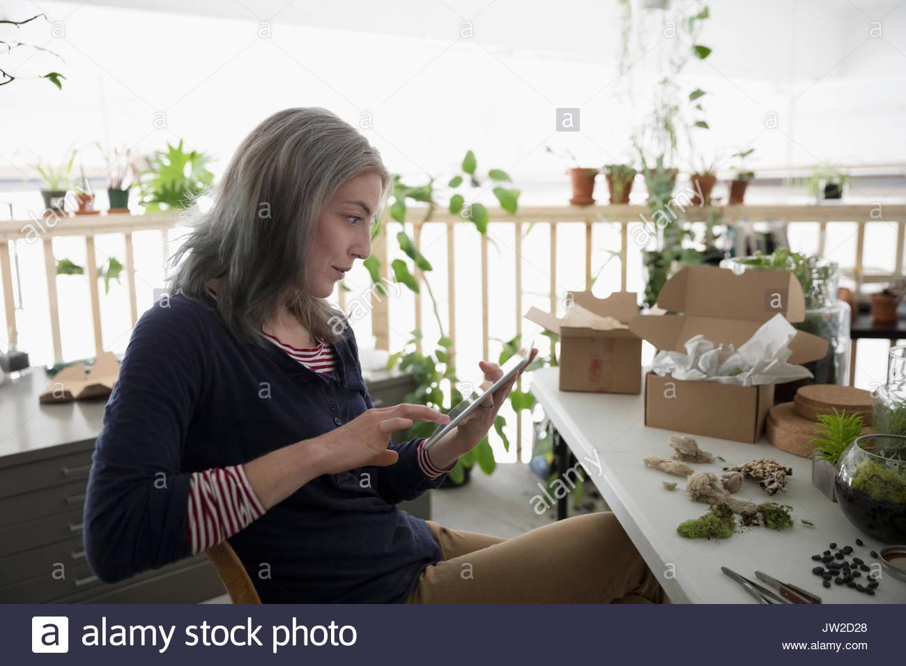 Female shop owner using digital tablet, making succulent plant terrariums - Stock Image