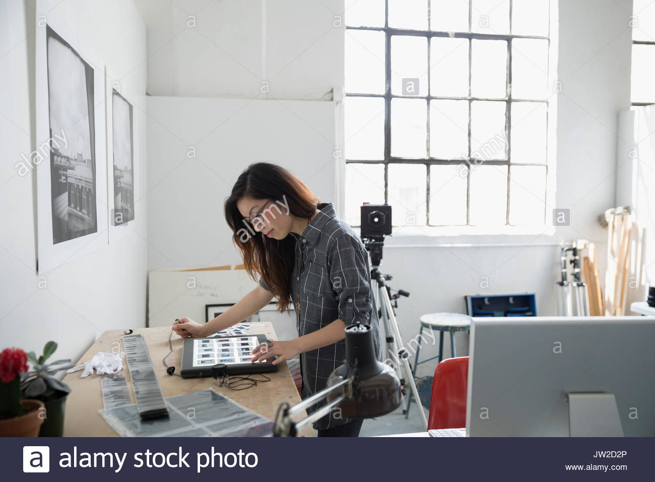 Female photographer reviewing photographic slides in art studio - Stock Image