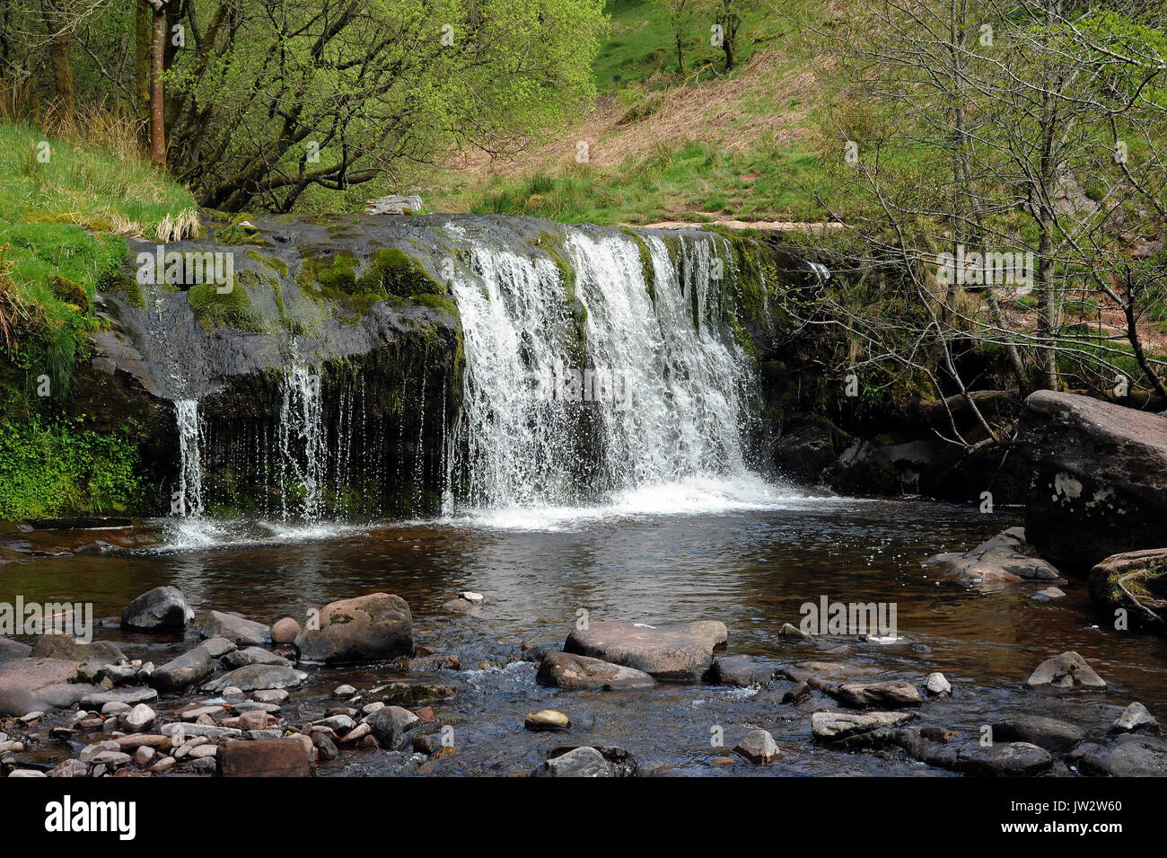 The upper of the two small waterfalls on the Afon Caerfanell near its confluence with the Nant Bwrefwr. Afon Caerfanell. - Stock Image
