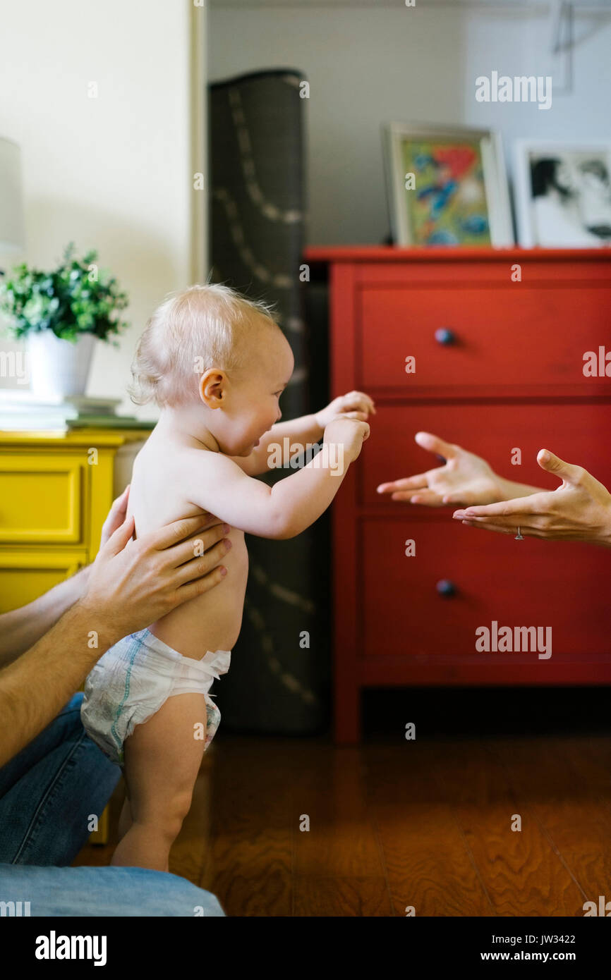 Parents assisting in son's (12-17 months) first step - Stock Image