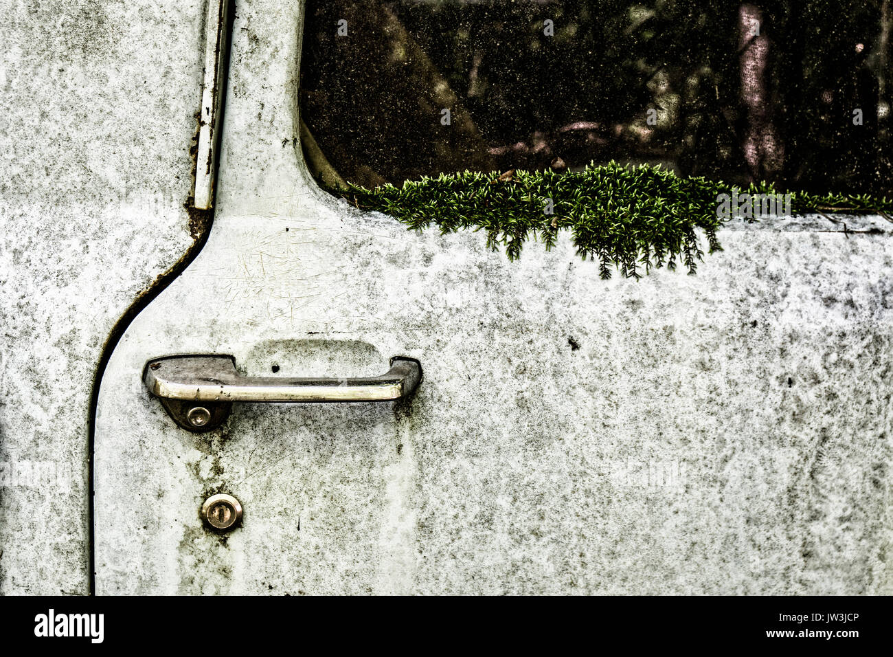 Abandoned car overgrown with moss - Stock Image