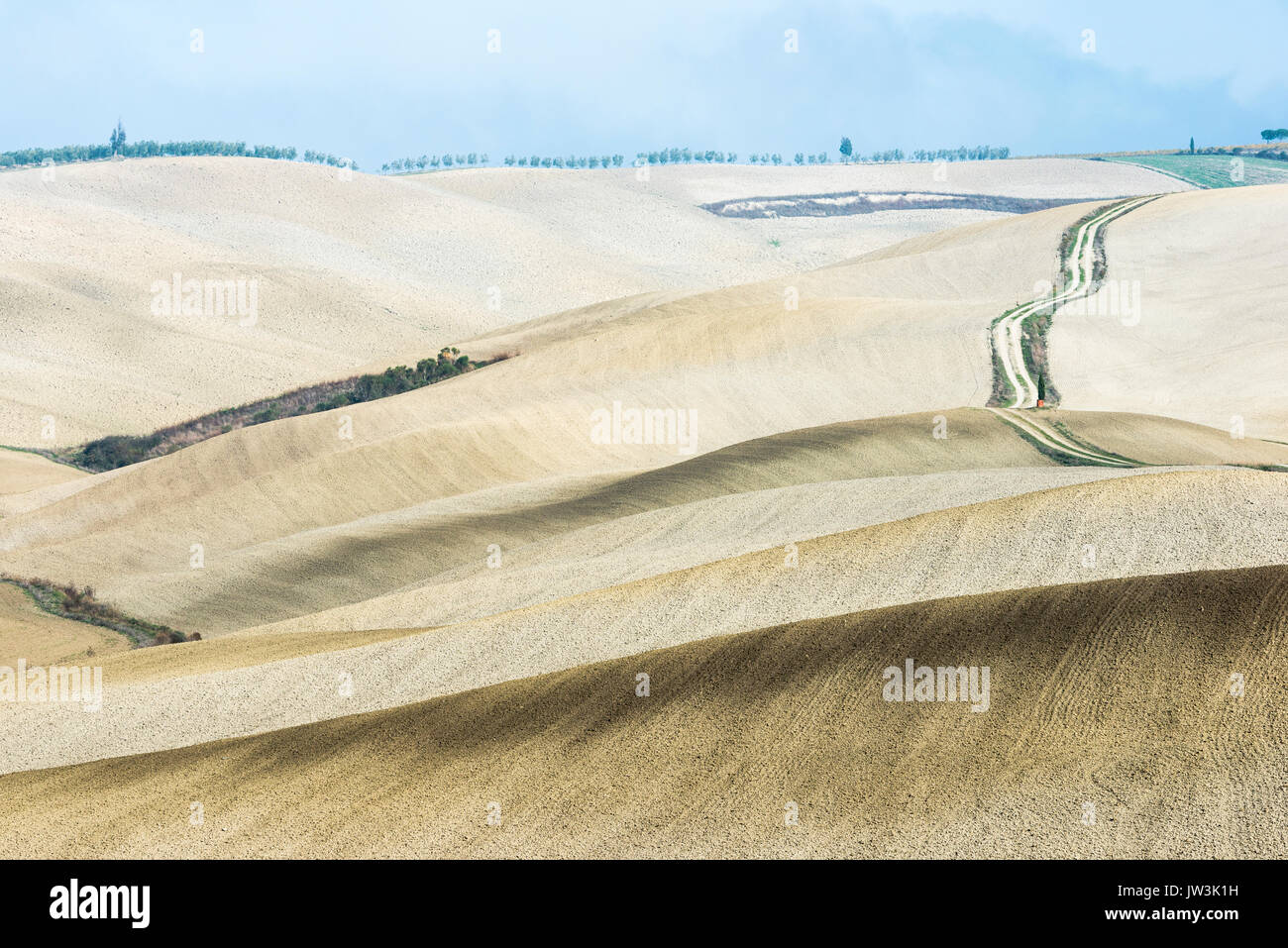 Italy, Tuscany, San Quirico D'orcia, Long twisting rural road leading through endless fields - Stock Image