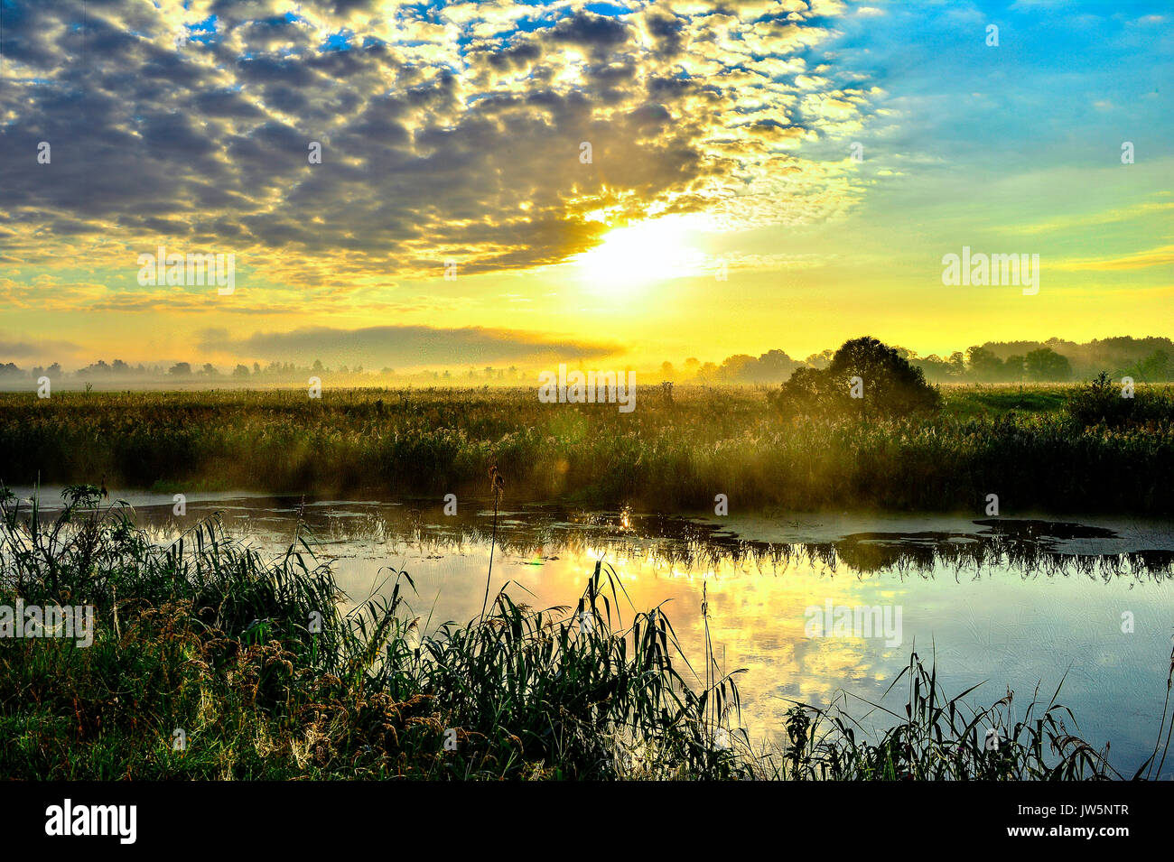 Photo with a sunny summer sunrise over the river - Stock Image