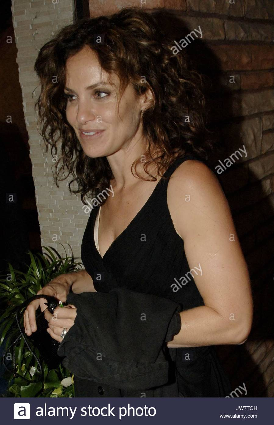 Amy Brenneman, who starred on the series Judging Amy and is now ...
