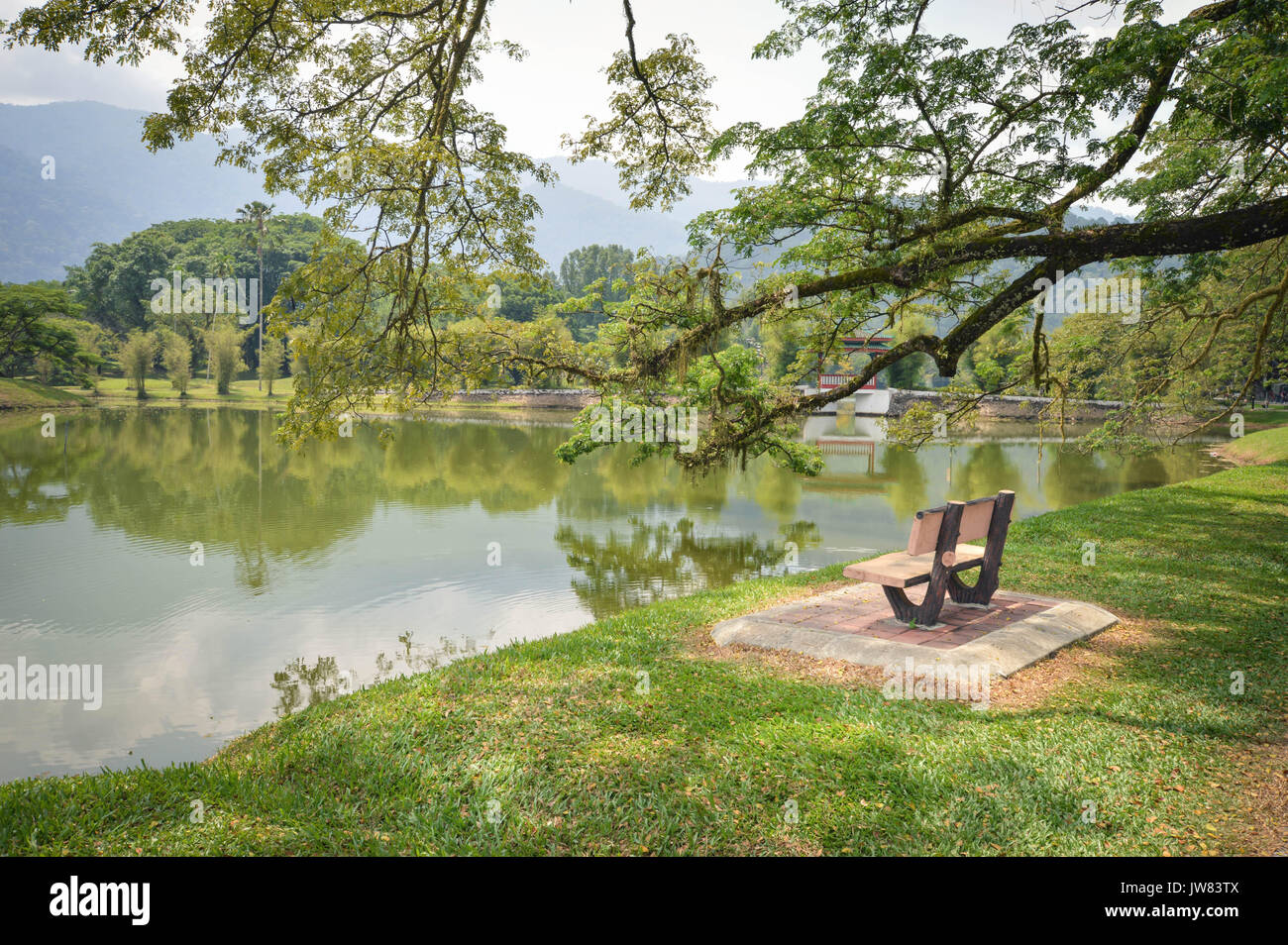 Bench and water reflections in Taman Tasik, aka Lake Gardens, in the city of Taiping, Perak State, Malaysia - Stock Image